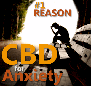 Find out why anxiety is the top reason people try cbd