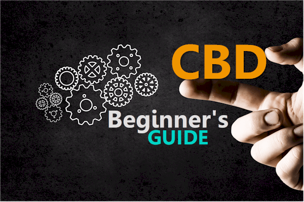 Online Beginners Guide to CBD oil