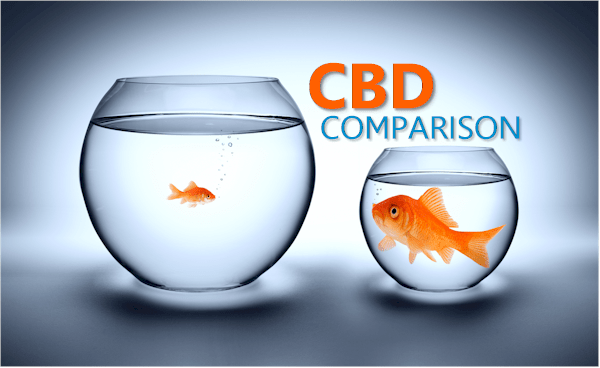 The Complete Comparison of CBD oils, balms, and brands online