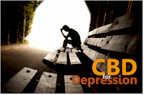 research on how CBD works with depression