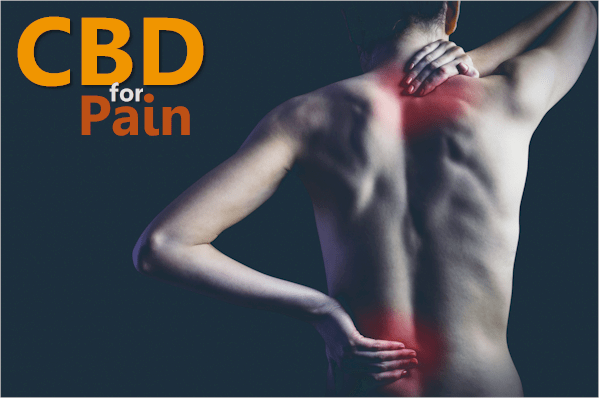 How does CBD work for pain
