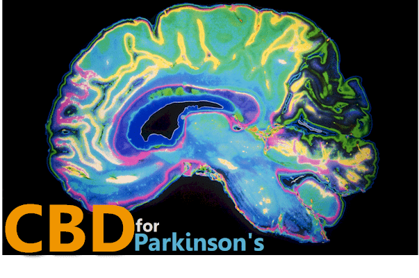 How CBD works for Parkinson's