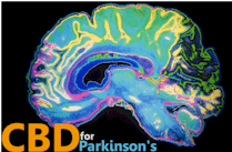research on how CBD works with Parkinsons