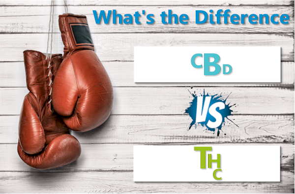 Difference between THC and CBD