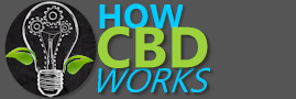 your online review and comparison site for CBD oils, tinctures, and balms